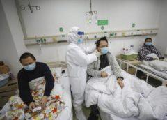 研究員がコウモリから新型ウイルスに感染、外部に拡散?…米報道
